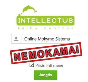 Online mokymosi sistema Intellectus